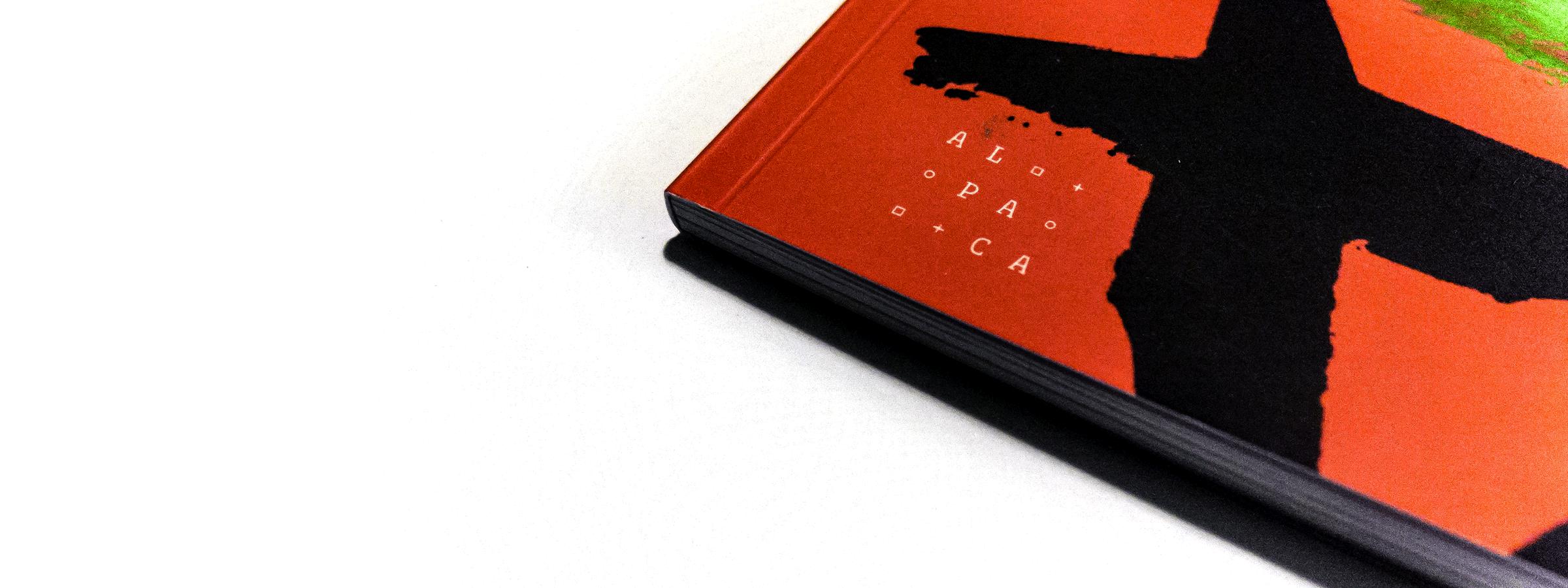 scrittura-e-scritture_libro-pagina_02